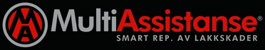 Multi Assistanse Logo
